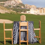 Navy blue striped tablecloth