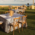 Vineyard chair Cabo rentals