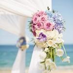 orchid-hydrangia-tulip-ceremony-canopy